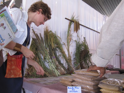 Deborah Scott, NSF IGERT Graduate Training fellow, examines local seeds and plants from across the globe at Peoples Biodiversity Festival, a major side forum of the Meeting of Conference of the Parties, United Nations Convention on Biological Diversity, H